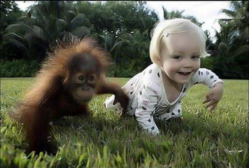 Funny Kids With Animals 28 Reading Kingdom Blog