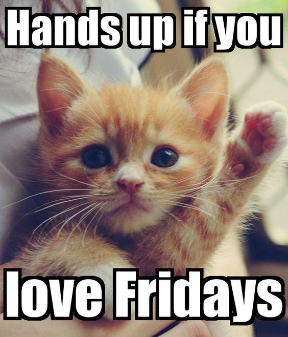 25 Funny Friday Memes 5 Friday Memes Reading Kingdom Blog